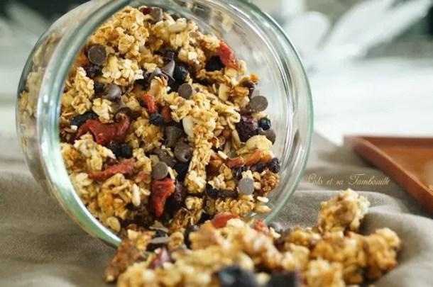 Granola maison {aux fruits secs & pépites de chocolat}