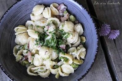 Orrechiettes aux fèves & lardons (1)