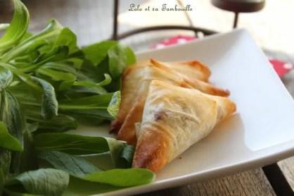 Samossas au confit d'oignon & coppa (1)