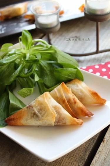 Samossas au confit d'oignon & coppa (5)