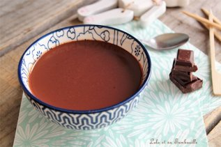 Sauce au chocolat Démoniak {de Christophe Michalak} (3)