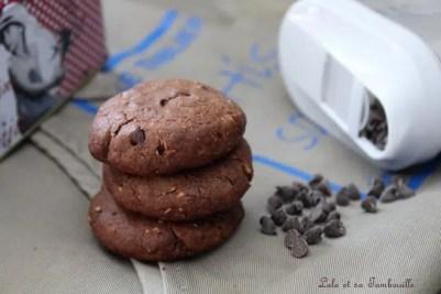 Cookies au chocolat & pépites (4)