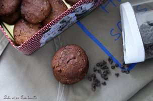 Cookies au chocolat & pépites (5)