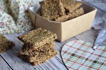 Crackers aux graines (3)