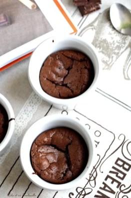 Moelleux au chocolat (1)