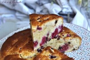 Gâteau au lait de coco & framboises (6)