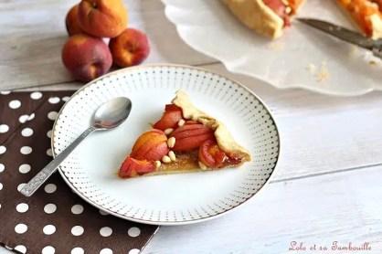 Tarte rustique aux abricots (5)