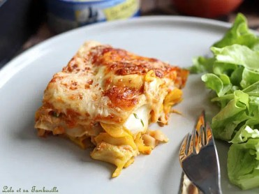 Lasagnes aux courgettes & thon (3)