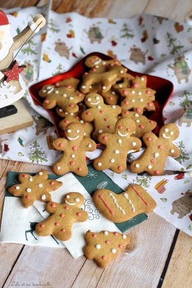 Biscuits aux épices (3)
