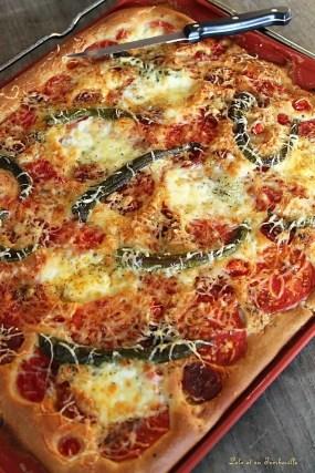 Pâte à pizza liquide (3)