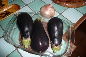 Rougail d'aubergines 1