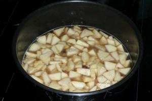 quinoa aux pommes et aux epices