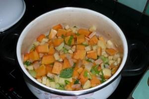 Soupe de Doubeurre au céleri branche (4)