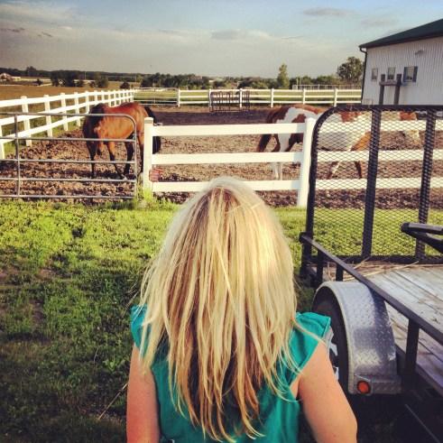 becca horses