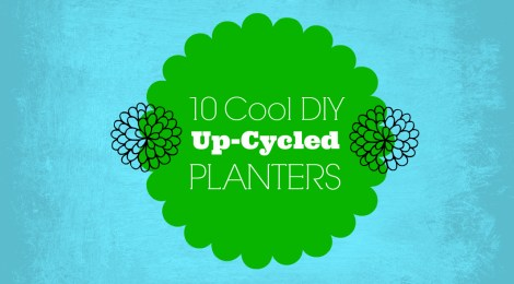 10 Cool DIY Up-cycled Planters