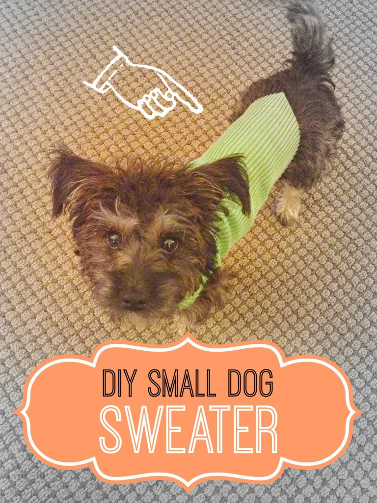 dog sweater cover