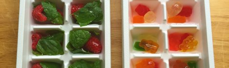 DIY Fancy Flavored Ice Cubes for Adults & Kids!