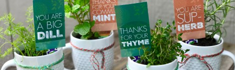 DIY Potted Herb Gift - Perfect for Mother's Day or Teacher Appreciation