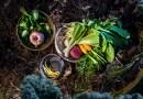 Sustentabilidad en la cocina: necesidad más allá de las modas