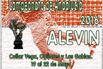 Campeonato de Andalucia de Balonmano Alevín 2016