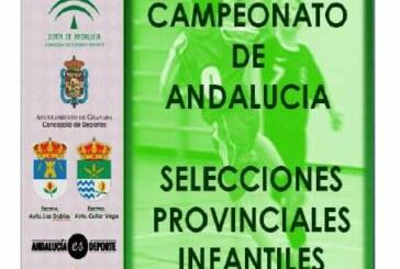 Campeonato de Andalucía Balonmano Infantil