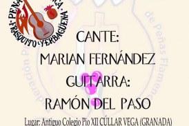 Actuación en la Peña Flamenca Frasquito Yerbagüena