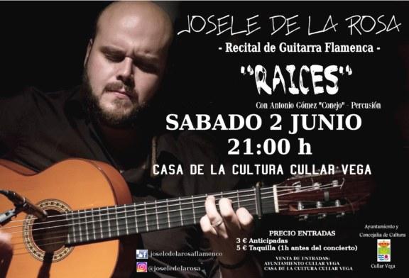 """Recital de Guitarra Flamenca """"Raíces"""""""
