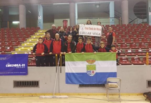 Excelente papel del Club de Tenis de Mesa de Cúllar Vega en el Campeonato de Andalucía