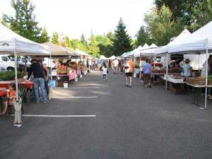 market-stalls-web,Cully Fest Stallholders, Cully Fest, Cunnamulla Festival, Cunnamulla, Cully Fest Outback & Aboriginal Folk Festival