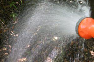 Em jardins abertos, dificilmente pecamos pelo excesso de água.