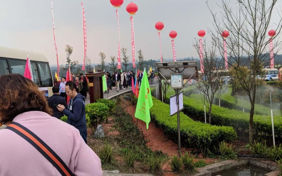 China Trip March 14- 28, 2019