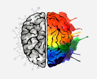 Image result for art on the brain