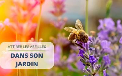 Attirer les abeilles dans son jardin : conseils et astuces