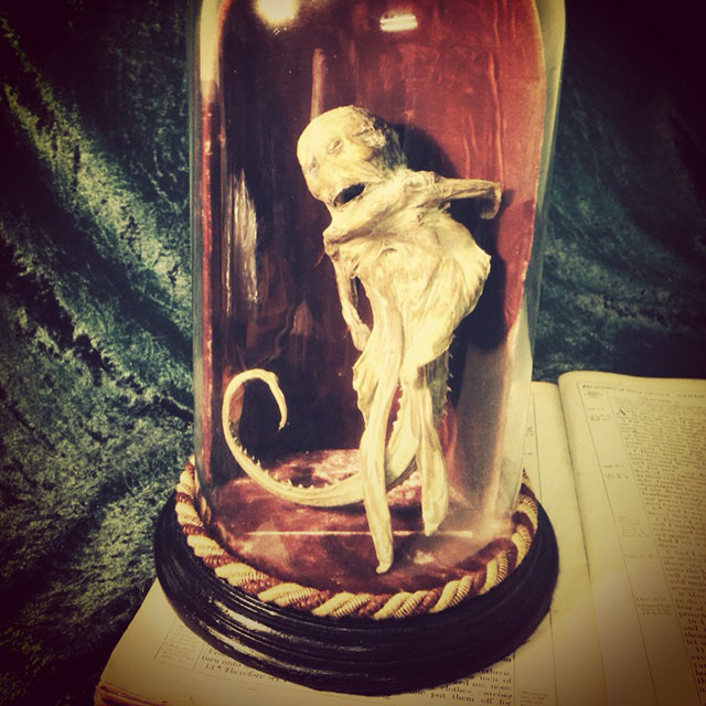 Weird Things From Crystal Curios