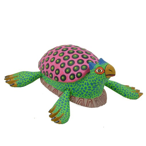 Castillo Family Castillo Family: Turtle Reptiles & Amphibians
