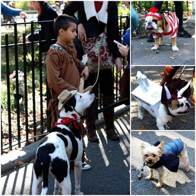 Dog Parade Collage 1