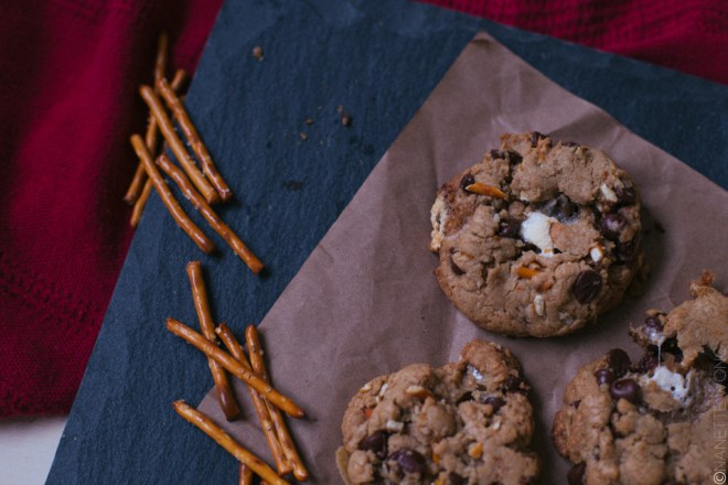 campfirecookies-15