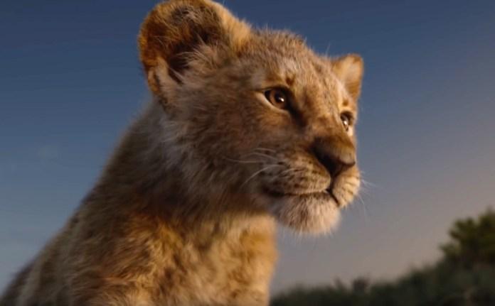 canzoni re leone