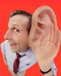 Resultado de imagem para orelha grande