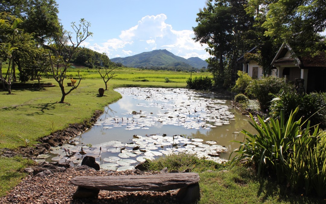 Laos – Natureza Exuberante às margens do Rio Mekong