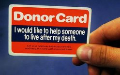 donor_1605627a