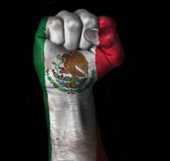 FistMexicanFlag