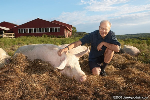 peter-singer-and-pig