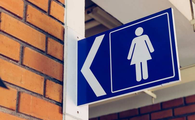 Ladies_womens_bathroom_sign_810_500_55_s_c1