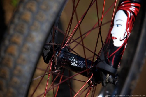 FBM Steadfast Custom BMX
