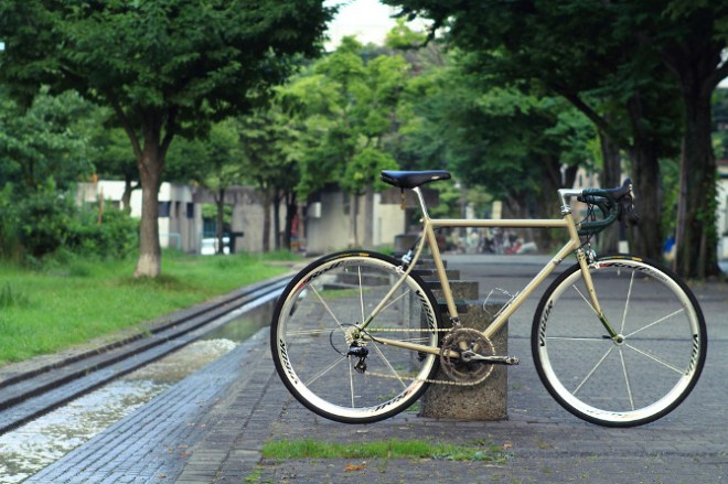icarus light touring city bike (10)