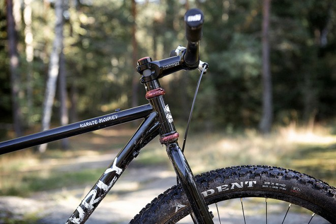 surly karate monkey 29er (5)