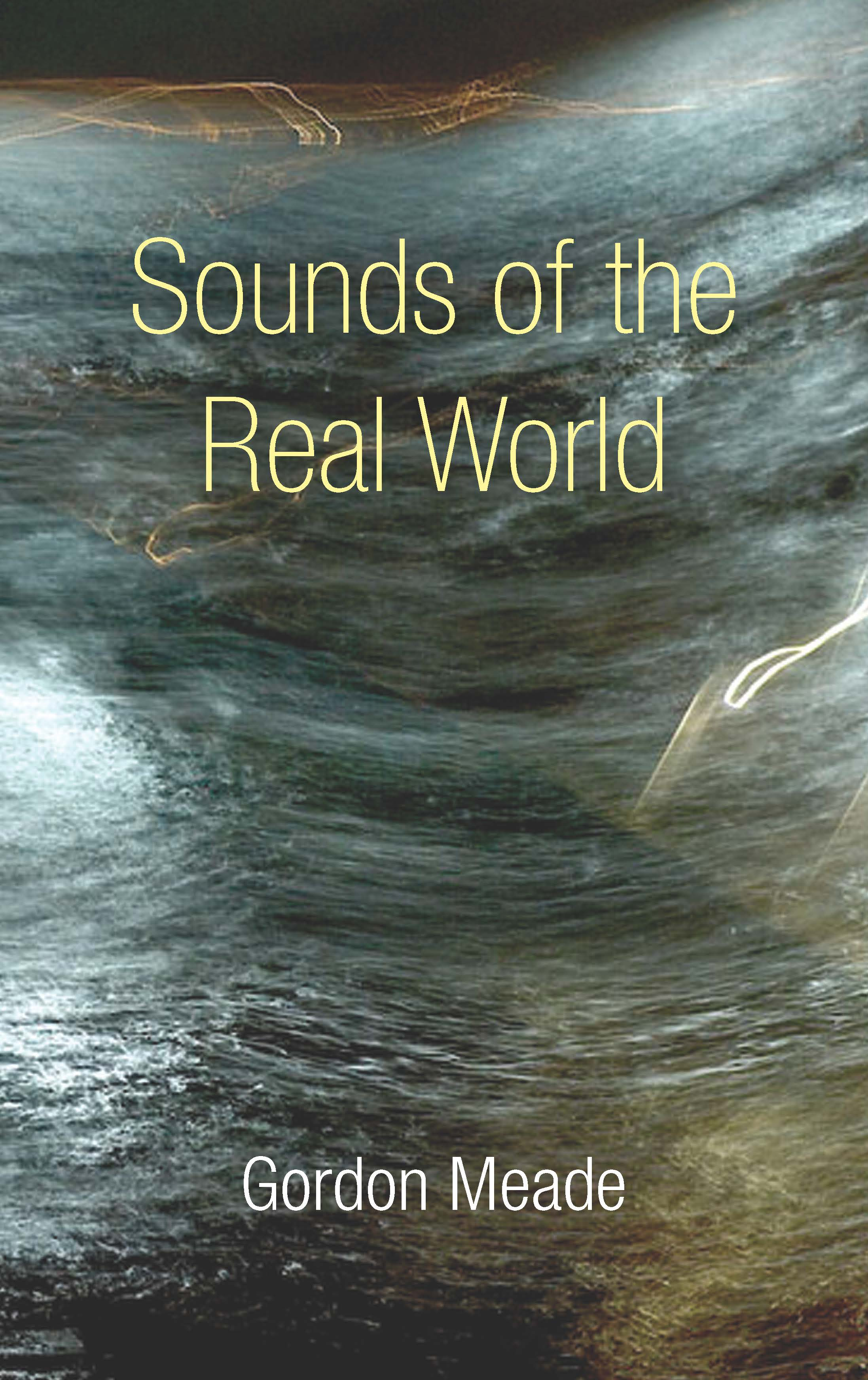 Sounds of the Real World by Gordon Meade