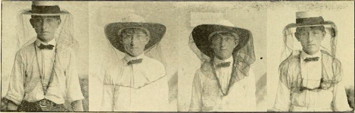 beekeepers 1910 internet archive