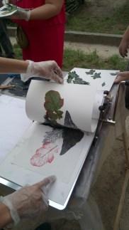 Atelier Impression végétale